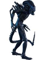 Alien - Alien Warrior - 1/6