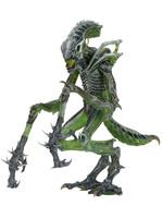 Alien - Mantis Alien - S10