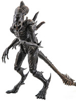 Aliens - Xenomorph Raven - Previews Exclusive