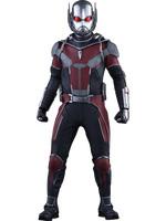Marvel - Ant-Man MMS - 1/6