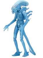 Alien - Warrior Alien (Kenner) - S11