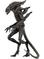 Alien - Xenomorph (Defiance) - S11