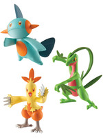 Pokemon - Combusken, Marshtomp & Grovyle