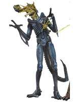 Alien - Battle Damaged Warrior Blue - S12