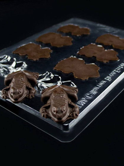 Harry Potter - Chocolate Frog Mold