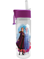 Frozen 2 - Anna & Elsea Water Bottle