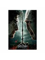 Harry Potter - Harry vs. Voldemort Jiggsaw Puzzle