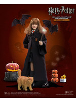 Harry Potter - Hermione Granger (Child) Halloween Limited Edition - 1/6