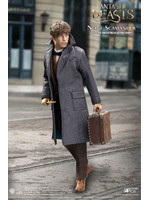 Fantastic Beasts - Newt Scamander Grey Coat Ver. - 1/6