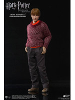 Harry Potter - Ron Deluxe Ver. My Favourite Movie Action Figure - 1/6