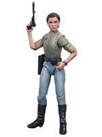 Star Wars Black Series - Princess Leia Organa (Endor)
