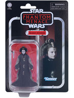 Star Wars The Vintage Collection - Queen Amidala