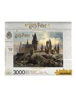 Harry Potter - Hogwarts Jigsaw Puzzle (3000 pieces)