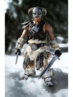 The Elder Scrolls V: Skyrim - Dragonborn Deluxe Edition - 1/6