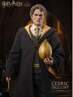 Harry Potter - Cedric Diggory My Favourite Movie Action Figure (Deluxe Ver.)