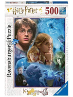 Harry Potter - Harry Potter in Hogwards Jigsaw Puzzle (500 pieces)